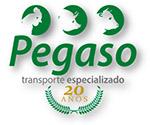 Fletera Pegaso, Transporte de carga especializado